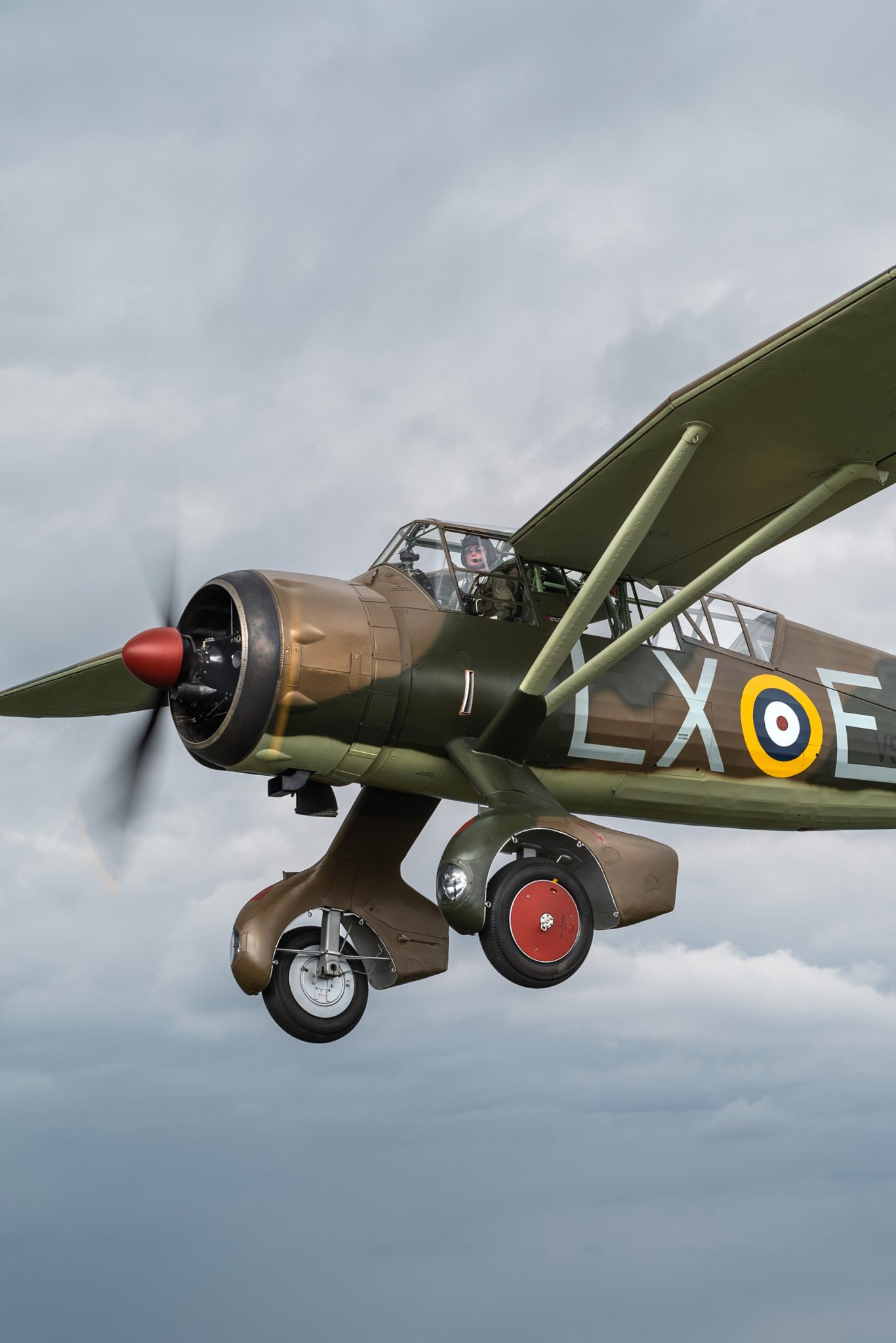 Lizzie-vintage-warbird-flying